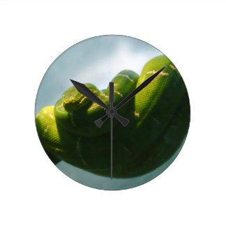 Green Tree Boa Round Clock