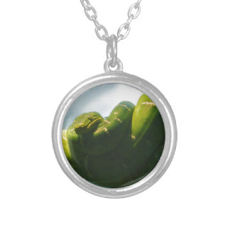 Green Tree Boa Silver Plated Necklace