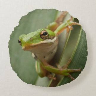 Green Tree Frog 2 sided round pillow