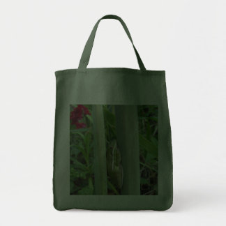 Green Tree Frog (Hyla cinera) Grocery Tote Bag