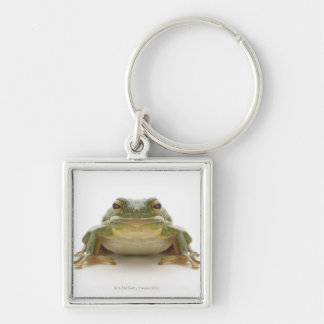Green tree frog (Hylidae cinerea) Silver-Colored Square Keychain