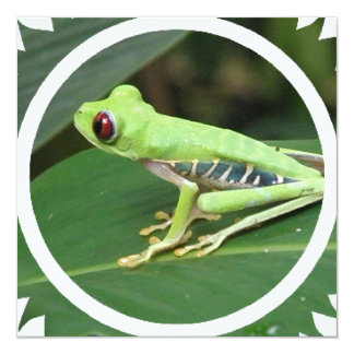 Green Tree Frog Invitation