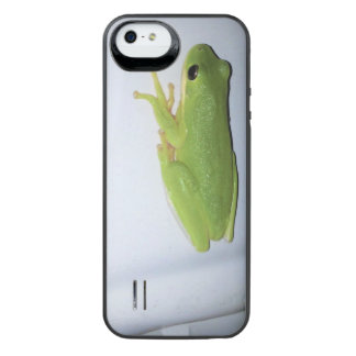 Green Tree Frog iPhone SE/5/5s Battery Case
