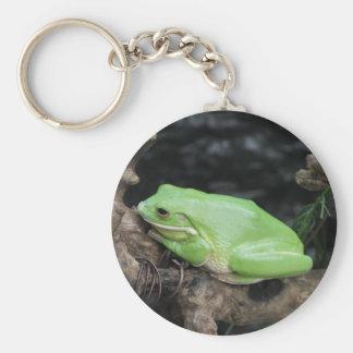 Green Tree Frog Key Chain