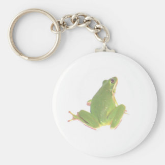 Green Tree Frog Keychains
