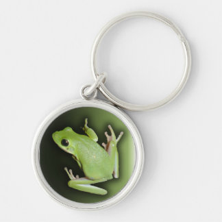 Green Tree Frog Silver-Colored Round Keychain