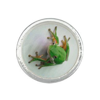 Green Tree Frog Ring