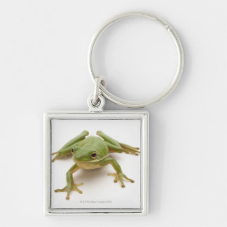 Green Tree Frog Silver-Colored Square Keychain