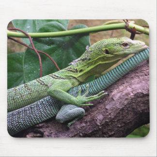 Green Tree Monitor - Varanus prasinus Mouse Pad