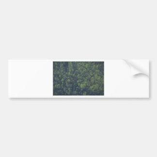 Green Trees Bumper Sticker