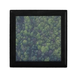 Green Trees Gift Box