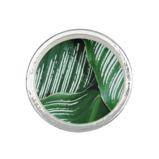 Green Tropical Leaves with White Stripes Closeup Ring