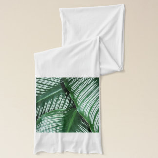 Green Tropical Leaves with White Stripes Closeup Scarf