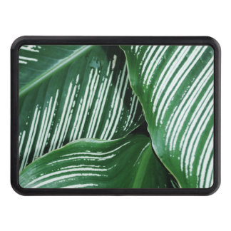 Green Tropical Leaves with White Stripes Closeup Trailer Hitch Cover