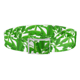 Green tropical palm trees belt