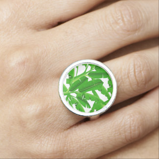 Green tropical palm trees rings