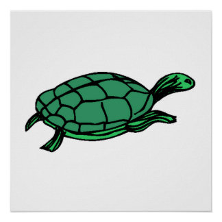 Green Turtle Print