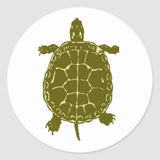 Green Turtle Shell Sea Ocean Gift Present Classic Round Sticker