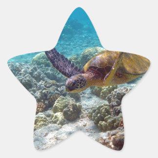 Green Turtle Star Sticker