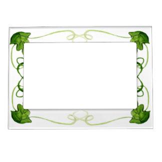 Green Vine Frame