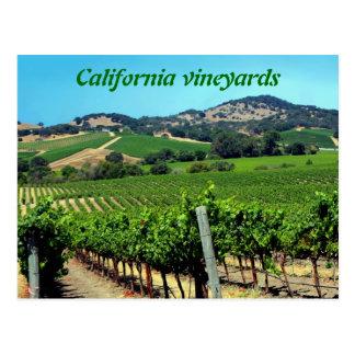 green vineyard photograph postcard