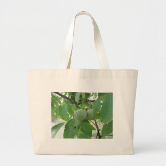 Green walnuts hanging on the tree . Tuscany, Italy Large Tote Bag
