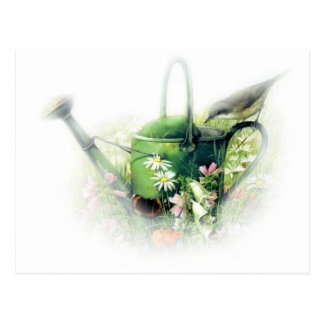 green watering can with bird postcard