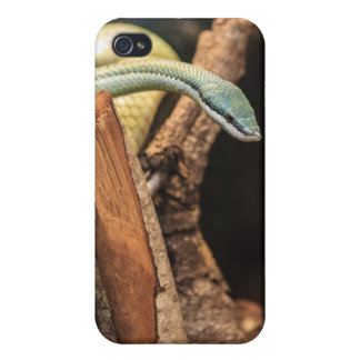Green White and Yellow Snake iPhone 4 Cases
