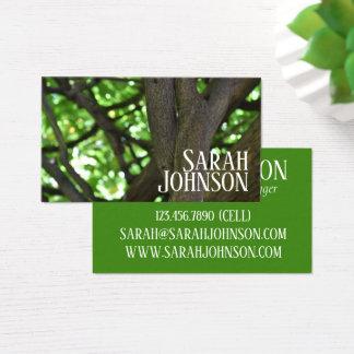 Green Wisteria Pergola Tree Nature Photography Business Card