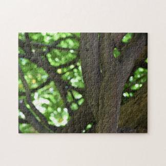 Green Wisteria Pergola Tree Nature Photography Jigsaw Puzzle