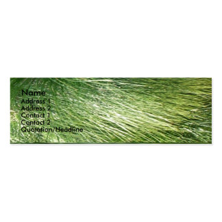 Green Works Mini Business Card