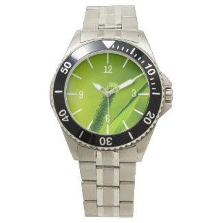 Green World Watch