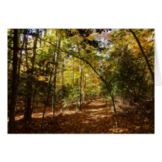 Greenbelt Park in Fall I Maryland Nature Scene Card