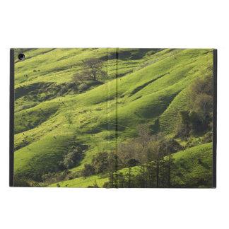 Greener Pastures in Big Sur CA iPad Air Case