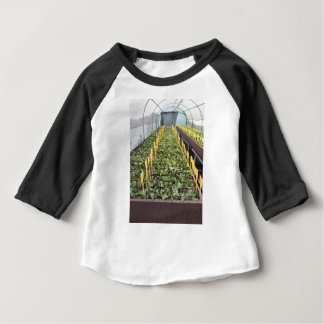 Greenhouse cultivation of Camellia japonica flower Baby T-Shirt