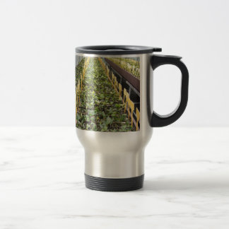 Greenhouse cultivation of Camellia japonica flower Travel Mug