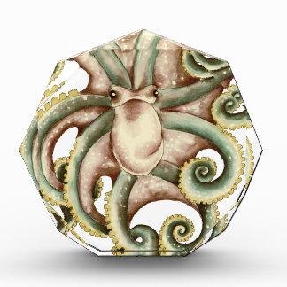 Greenish octopus