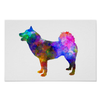 Greenland Dog in watercolor Poster