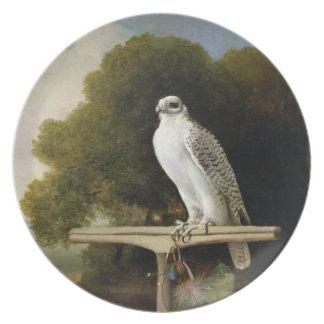Greenland Falcon (Grey Falcon), 1780 (oil on panel Plates