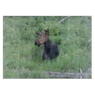 Greenville Moose 2 Cutting Board