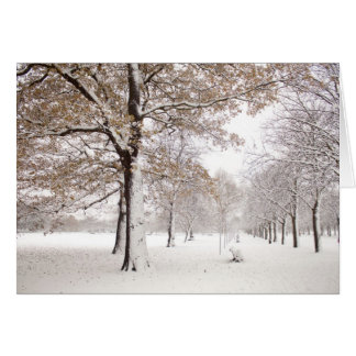 Greenwich Park in winter Card