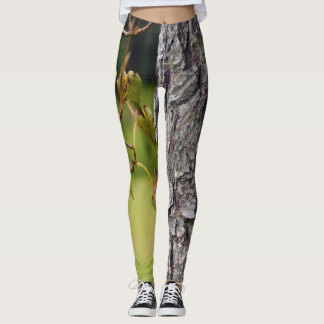 greenwood leggings