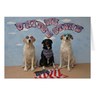 "Greeting card, 3 dogs saying ""United we stand"" Greeting Card"