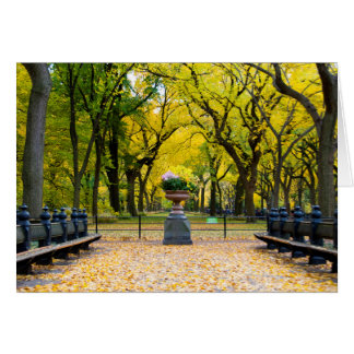 Greeting Card - Central Park in Autumn, New York