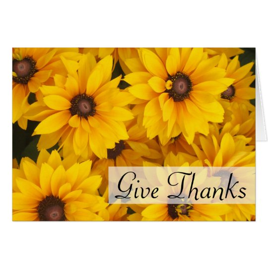 Greeting Card - Gloriosa Daisies