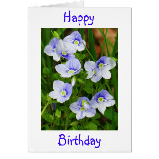 Greeting card little blue flowers