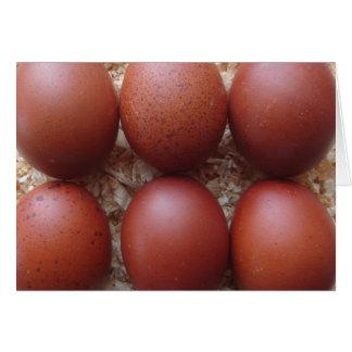 Greeting Card - Marans Chicken Eggs