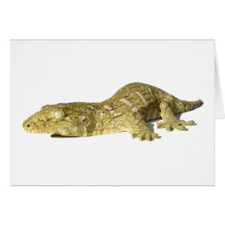 Greeting Card - New Caledonian Giant Gecko