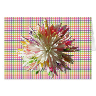 Greeting Card - Painted Spider Mum on Checks