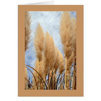 Greeting Card with Ornamental Grasses